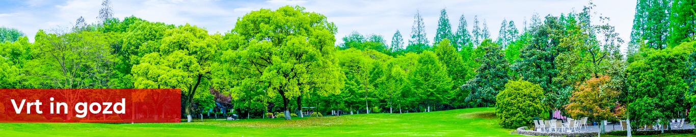 Vrt in Gozd